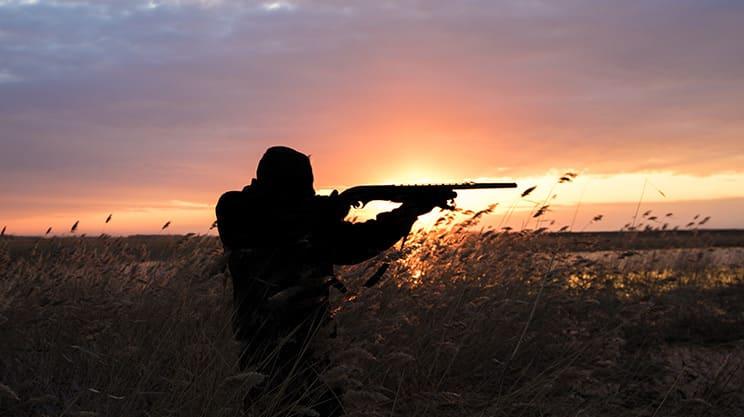 Die Jagdhaftpflichtversicherung – sicherer Schutz rund um die Jagd