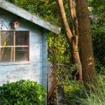 Stehen die Bäume im Garten noch fest? Kontrollen helfen, viel Geld zu sparen